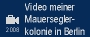 Start des videos mit RealPlayer